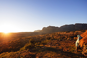 A local man warming up in the morning sun, Andringitra National Park, Ambalavao, central area, Madagascar, Africa