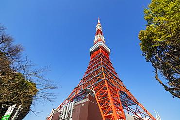 Tokyo Tower, Roppongi, Tokyo, Japan, Asia