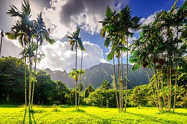 Ho'omaluhia Botanical Garden, Oahu Island, Hawaii, United States of America, North America