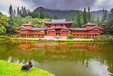 Byodo-in Japanese temple, Oahu Island, Hawaii, United States of America, North America