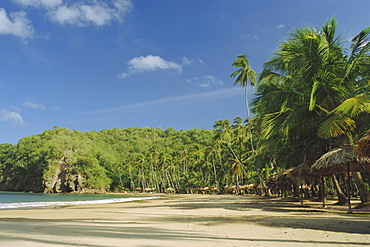 Beach of Playa Medina, Paria Peninsula, Venezuela, South America