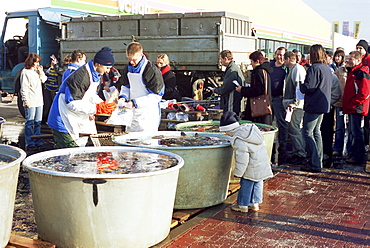Buying live carp from tubs on the street for Christmas Eve, a tradition dating back hundreds of years, Prague, Czech Repubic, Europe