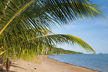 Dunk Island beach with islands offshore, palm leaves, Great Barrier Reef, UNESCO World Heritage  Site, Queensland, Australia, Pacific