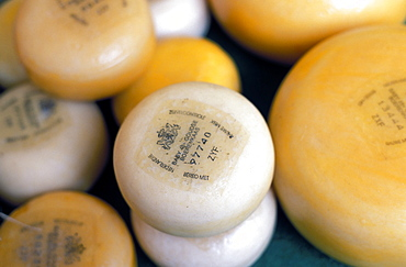 Close-up of Dutch cheeses, Amsterdam, The Netherlands (Holland), Europe