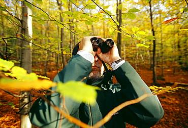 Birder in woodland in autumn, United Kingdom, Europe