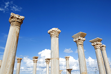The columns of the central basilica, Apollonia, Libya, North Africa, Africa