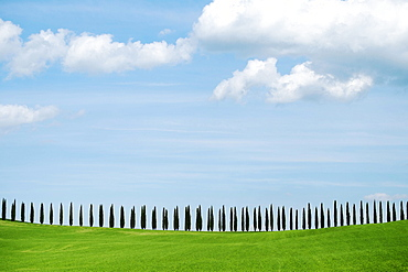 Val D'Orcia, UNESCO World Heritage Site, Tuscany, Italy, Europe