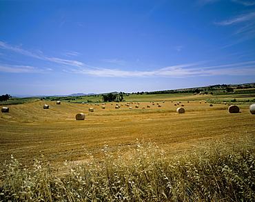 Campidano, island of Sardinia, Italy, Europe