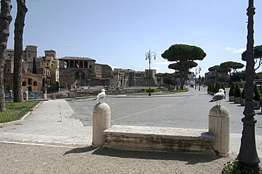 Imperial Forum Avenue, deserted due to the 2020 Covid-19 lockdown restrictions, Rome, Lazio, Italy, Europe