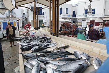 Mikonos fish market, Cyclades, Greek Islands, Greece, Europe