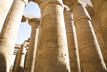 The Temple of Karnak, Thebes, UNESCO World Heritage Site, Egypt, North Africa, Africa