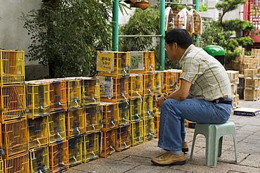 Bird Garden market, Mong Kok district, Kowloon, Hong Kong, China, Asia