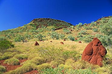 Mount Bruce and termite mounds, Karijini National Park, Pilbara, Western Australia, Australia, Pacific