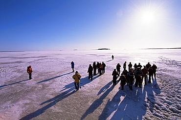 People walking on pack ice, Gulf of Bothnia, Lapland, Sweden, Scandinavia, Europe - 741-3720