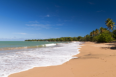 Cluny Beach, Deshaies, Basse-Terre, Guadeloupe, French Caribbean, France, West Indies, Central America