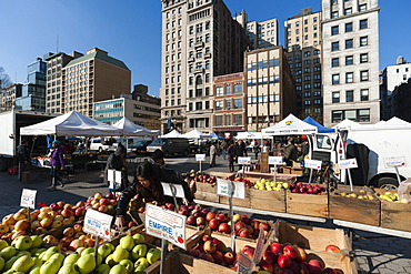 Friday market in Union Square, New York City, United States of America, North America