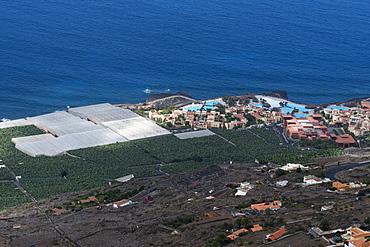 Banana plantations, El Remo, La Palma Island, Canary Islands, Spain, Atlantic, Europe