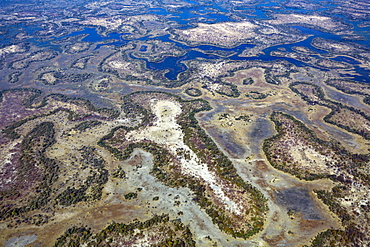 Aerial view of the Okavango delta, UNESCO World Heritage Site, Botswana, Southern Africa,