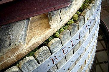 Grape press, Bellavista winery, Erbusco, Franciacorta, Lombardy, Italy.