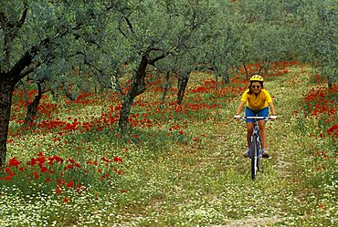 Cyclist in the country, Biking around Italy