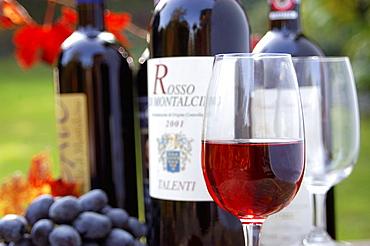 Wine Rosso di Montalcino, Tuscany, Italy