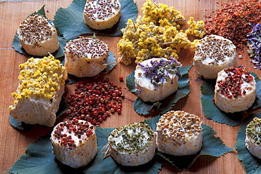 Crostini with robiola, herbs and nut, Roccaverano, Piedmont, Italy