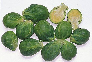 Brassica Oleracea, North Italy, Italy