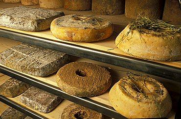 Tome a ciambella, Guffanti cheese dealer, Arona, Piedmont, Italy.