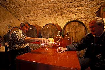 Biagio Stagno wine cellar, Isola Del Giglio, Toscana, Tuscany, Italy