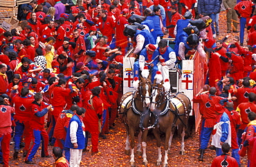 Battle of the oranges, Traditional carnival, Ivrea, Piedmont, Italy