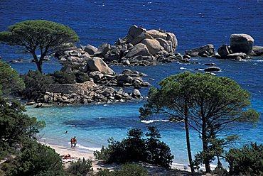 Palombaggia beach near Porto Vecchio, Corsica island, France, Europe