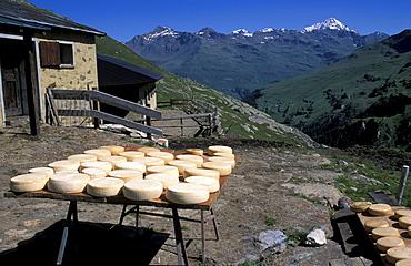 Malga dell'Alpe, Strada del Gavia, Stelvio National Park, Alto Adige, Italy