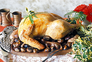 Gobbler with chestnuts, Italy