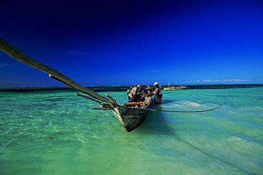 Fisherman, Zanzibar, Tanzania, East Africa, Africa