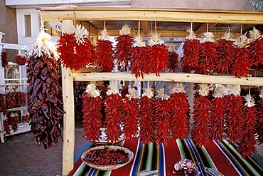 Chili peppers, New Mexico, United States of America, North America