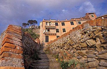 Steps, Riomaggiore, Ligury, Italy