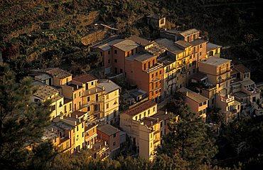 Cityscape, Manarola, Ligury, Italy