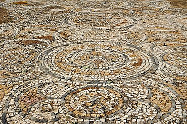 Mosaic floor, Nora Roman ruins, Pula, Sardinia, Italy, Europe
