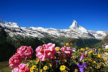 Matterhorn mountain, Zermatt, Valais, Switzerland, Europe