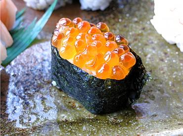 Ikura Sushi, Japanese food, Japan, Asia - 746-50951