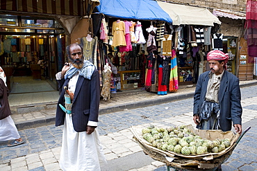 Prickly pear cacti, Sana'a, Yemen, Middle East