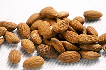 Almonds, Trentino Alto Adige, Italy