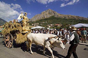 Wheat popular feast, Foglianise, Benevento, Campania, Italy, Europe