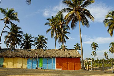 Traditional huts, Punta Cana, Dominican Republic, West Indies, Central America