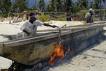 Antiparasitics treatment on a traditional fishing boat, Zanzibar, United Republic of Tanzania, Africa