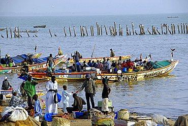 Fishmarket at port, M'Bour, Republic of Senegal, Africa