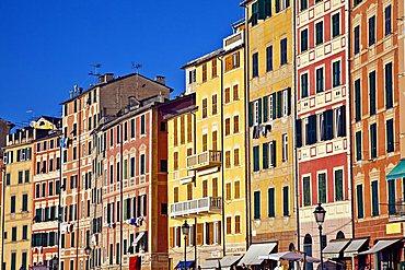 Typical houses, Camogli, Ligury, Italy