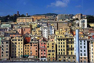 City view, Genoa, Ligury, Italy