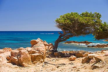 Beach, Lispedda Cardedu, Ogliastra, Sardinia, Italy, Europe