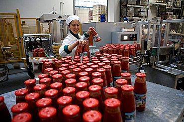 Tomato processing, Luxitalia factory, San Pietro Vernotico, Puglia, Italy